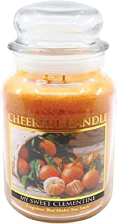 product image for A Cheerful Giver Sweet Clementine 24 oz Jar Candle, Orange