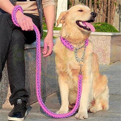 Correa de Perro Resistente con Collar, Cuerda de Entrenamiento para Escalada Caminar, Correa de Tracción para Mascota, Lead de Absorción de Impactos ...