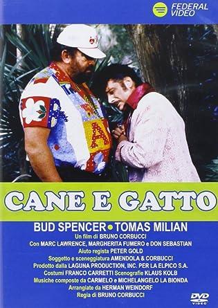 Cane E Gatto Amazonit Milian Spencer Film E Tv