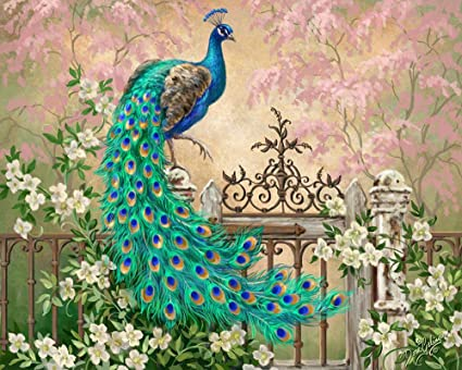 Amazon Com Diy Paint By Numbers Kit For Adults Peacock Green Blue