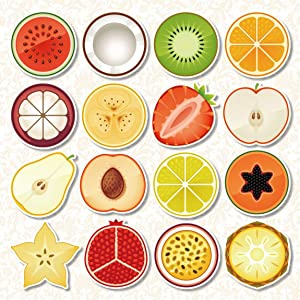 Hslife 16pcs Refrigerator Magnets Fruit Pattern Round Fridge stickers for Office Cabinets Whiteboards Tree Decorative Photo Abstract (16 Fruit)