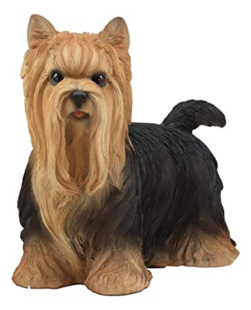 Ebros Realistic Long Haired Yorkie Statue 11.5 Long Pet Pal Yorkshire Terrier Dog Breed Collectible Resin Decor Figurine with Glass Eyes Animal Sculpture Dogs Puppy Puppies Pets