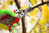 Eoney Professional Sharp Bypass Pruning