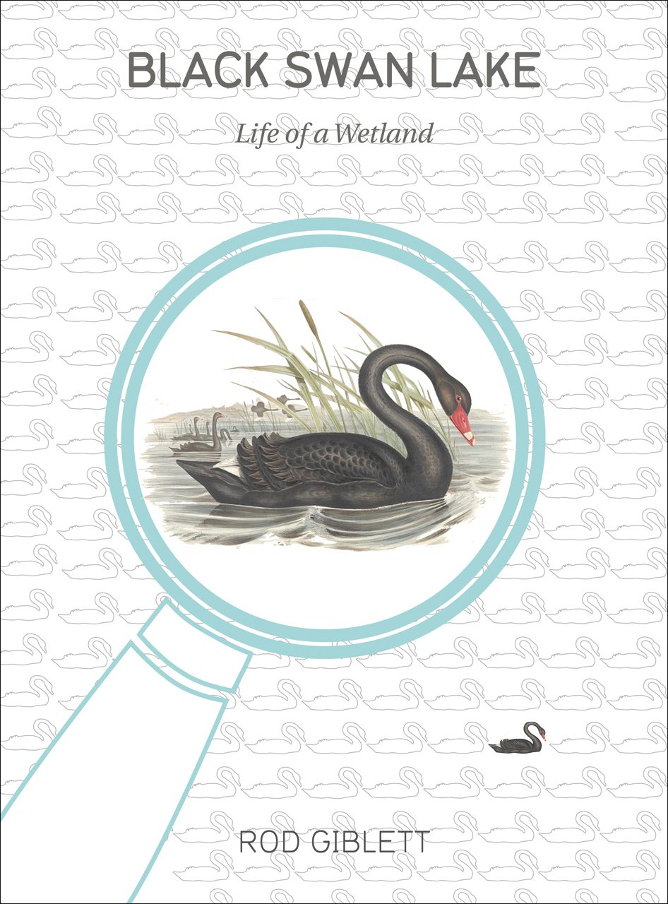 Read Online Black Swan Lake: Life of a Wetland (Cultural Studies of Natures, Landscapes and Environments) ebook
