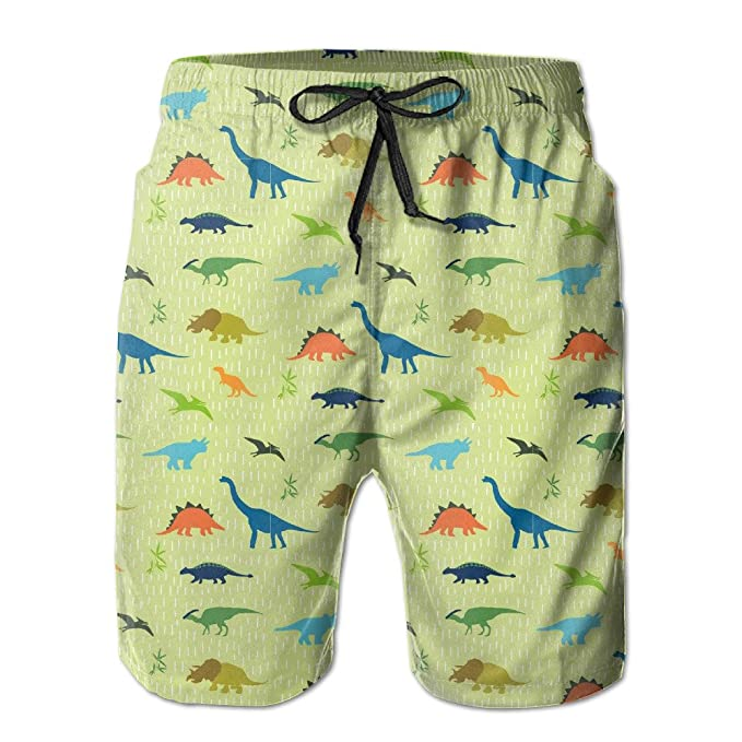 a8bbba6452993 ICE65SALT Mens Dinosaur Pattern Swim Trunks Quickly-dry Casual Beach Cargo  Shorts