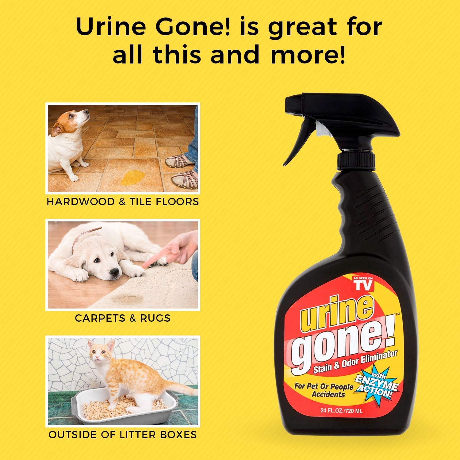 Urine Gone, S Stain & Odor Eliminator: Professional Strength Fast-Acting  Enzyme-Based Solution, Instantly Penetrates and Neutralizes into the Fibers