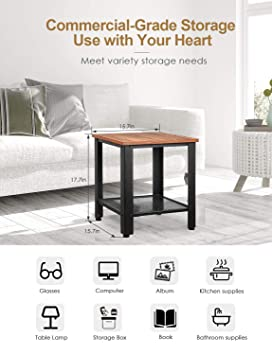 Amazon.com: End Table Industrial 2-Tier Side Table with ...