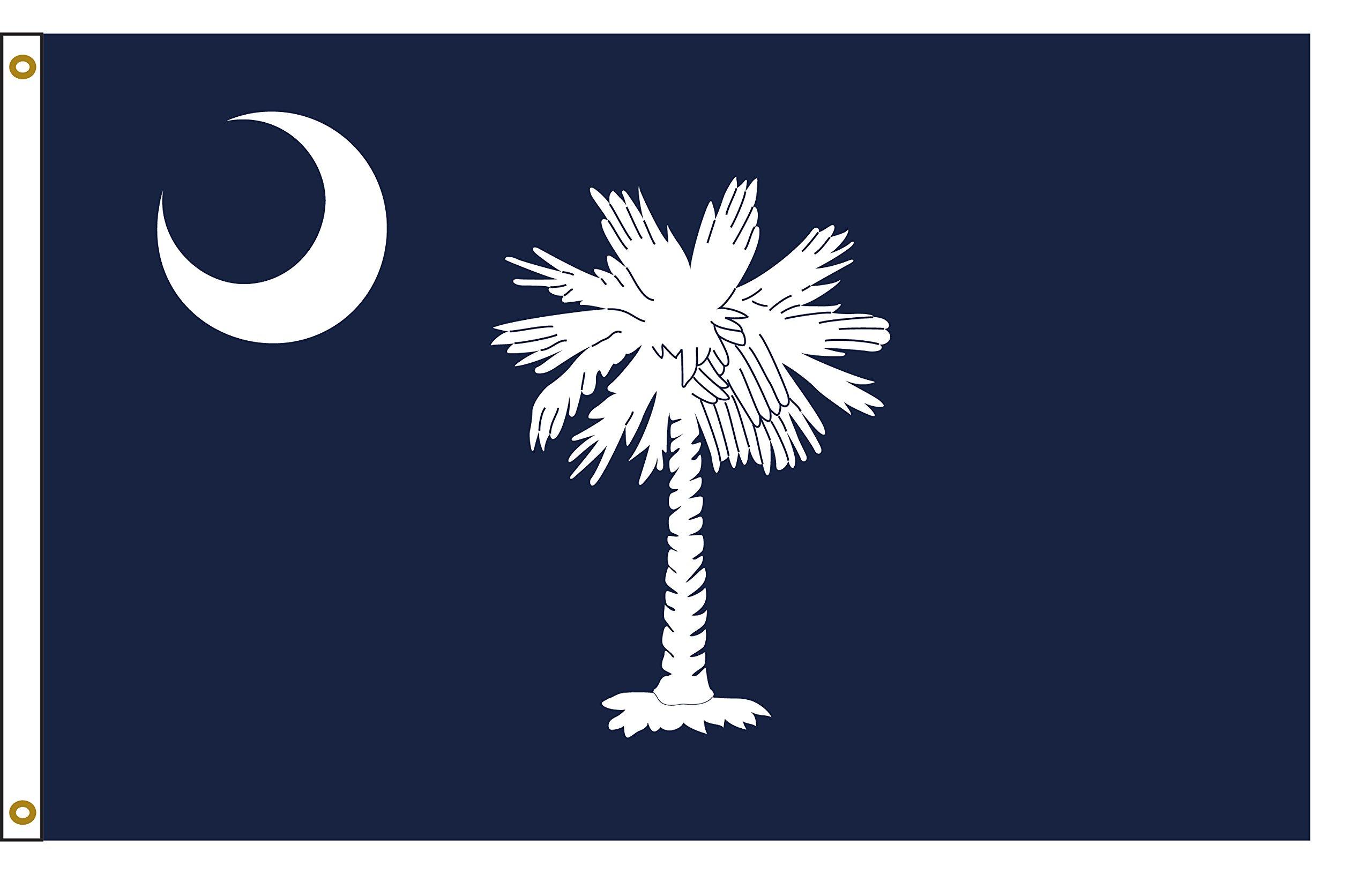South Carolina 8ftx12ft Nylon State Flag 8x12 Made In USA 8'x12'