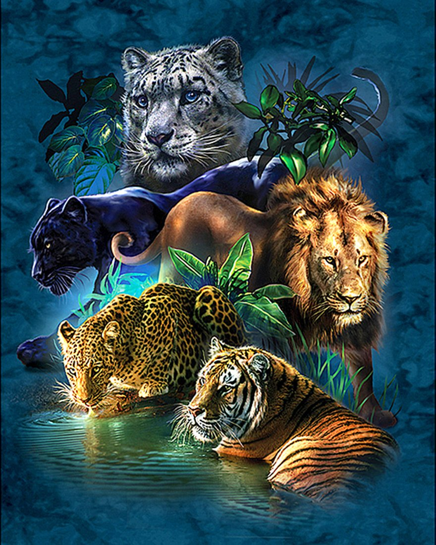 21secret 5D Diamond Diy Painting Full Drill Handmade Tiger Lion Leopard Catamount Cross Stitch Home Decor Embroidery Kit