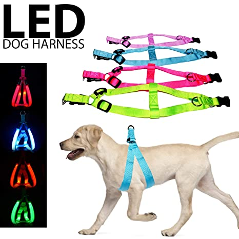 Pet Products Independent Black Heavy Duty Soft Padded Comfort Control Adjustable Led Dog Collar Harness Pet Chest Strap Usb Rechargeable 2019 Official