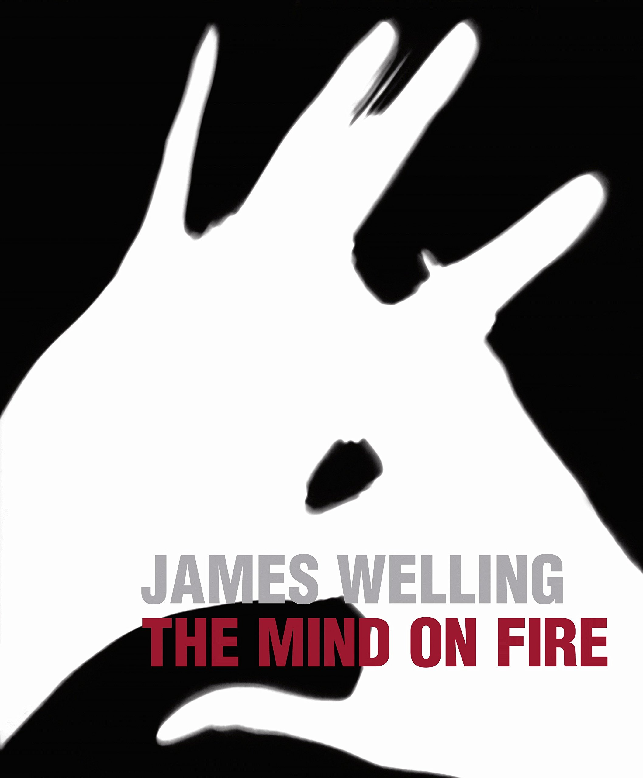 James Welling: The Mind on Fire (English, Spanish and English Edition) by Prestel
