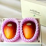神内マンゴー 北海道産 3Lサイズ 特秀品 2玉 アップルマンゴー アーウィン種