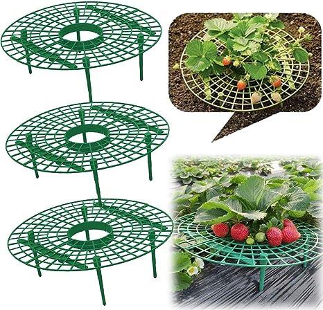 1 Pezzi con 4 Gambe Resistenti Balcone per Giardinaggio Pieghevole LQKYWNA Supporto per Fragole in Plastica per Piante