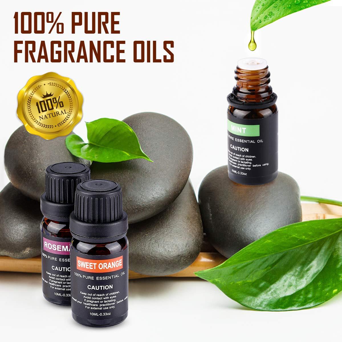 12 Aceites Set 100% Puros y Naturales
