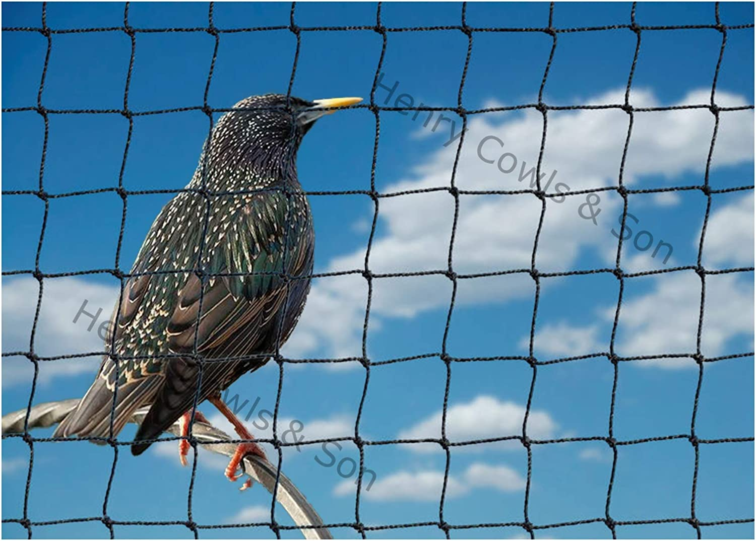 Bird Netting For the Garden 5m x 10m 28mm Anti Starling Knotted 1 1//8 Mesh Heavy Duty Black Net