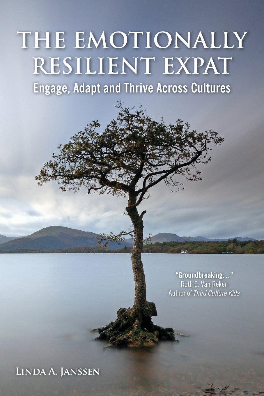 Download The Emotionally Resilient Expat - Engage, Adapt and Thrive Across Cultures ebook