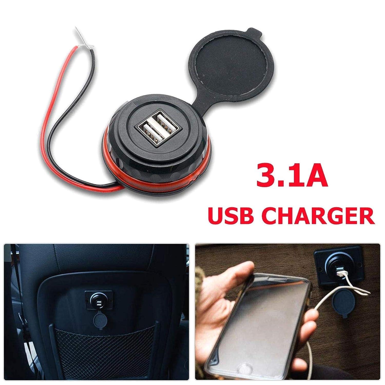 ZXYAN Adattatore per Caricabatterie 3.1A Nero Caricabatteria da Auto USB 2 Porte iPhone//Android 12V 24V