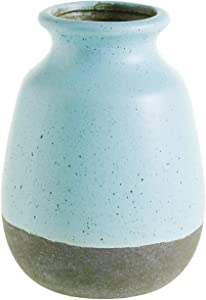 "AC Decor Robin's Egg Blue Ceramic Vase with Crackle Glaze, 6.5"""