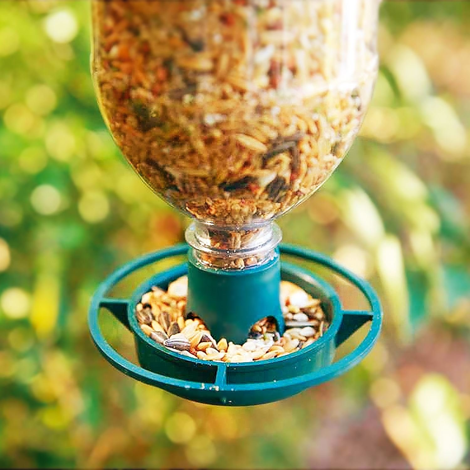 cozy hanging natural tube clear pole decor seed decoration francisco bird feeders feeder for with garden squirrel food acrylic san spinning