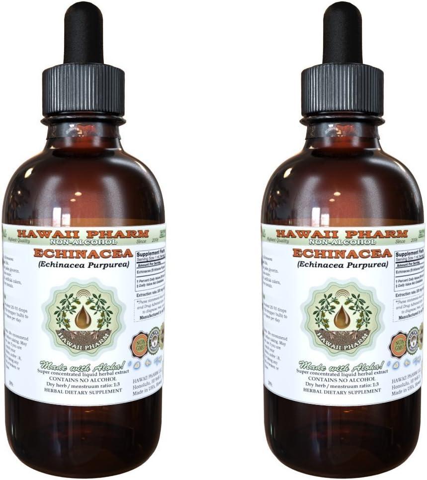 Echinacea Alcohol-FREE Liquid Extract, Organic Echinacea Echinacea Purpurea Dried Herb Glycerite 2×4 oz