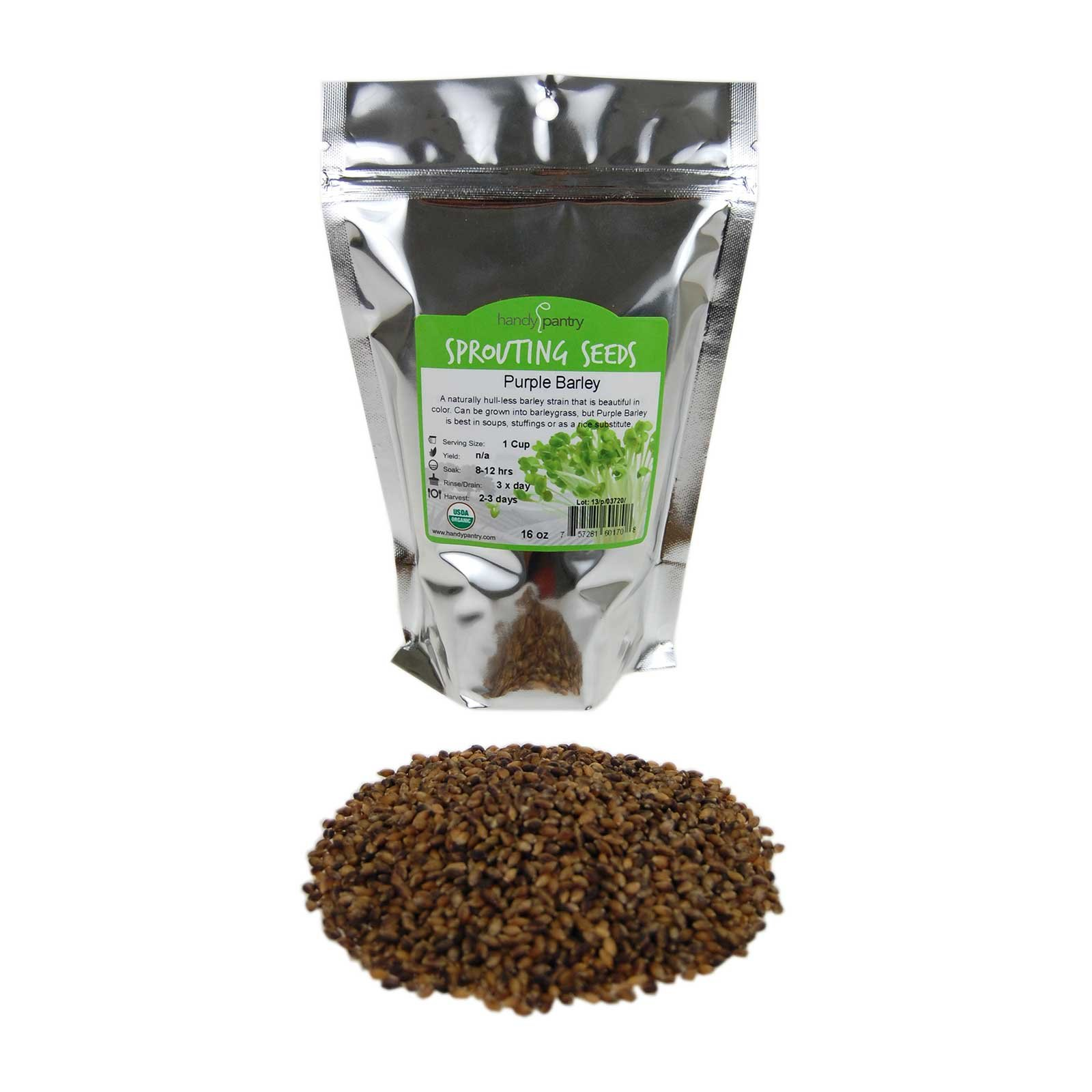 Purple Barley Seeds - Certified Organic - 1 Lb Resealable Pouch - Handy Pantry Brand - No Hull - For Barleygrass, Grind for Flour, Food Storage, Soups & More