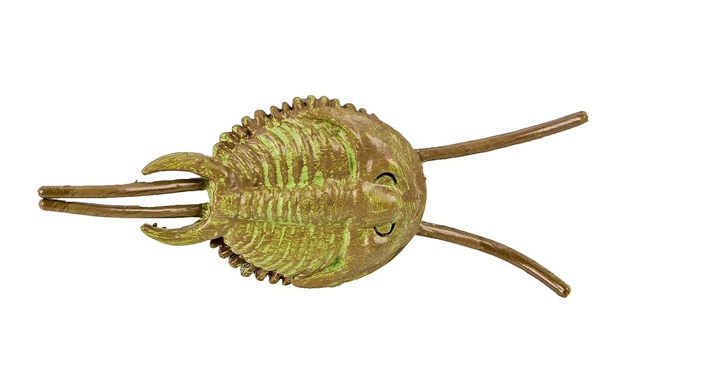 Safari Ltd  Cambrian Life TOOB 677104