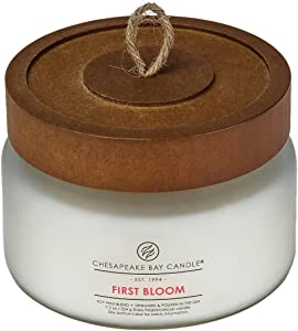Chesapeake Bay Candle Scented Candle, First Bloom, Small Jar