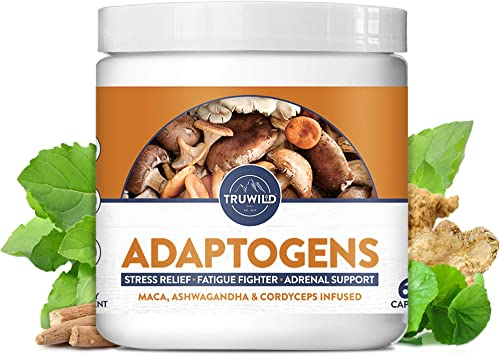 ADAPTOGENS Adrenal Support Stress Relief Blend with Natural Mood Boost – Ashwagandha, Maca, Siberian Ginseng, Cordyceps Mushroom, Holy Basil, Astragalus, Gotu Kola – 60 Capsules