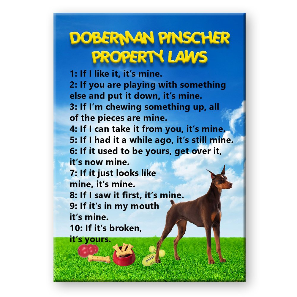 Doberman Pinscher fridge magnet og