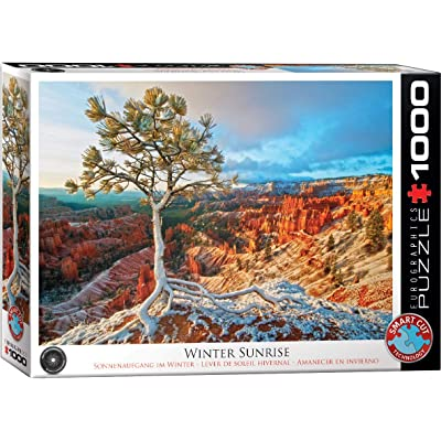 EuroGraphics Winter Sunrise Jigsaw Puzzle (1000-Piece): Toys & Games