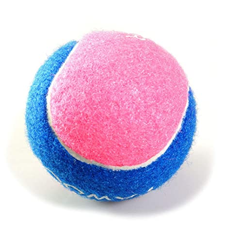 prosa - Juguete de Tenis de Juguete Indestructible, para ...