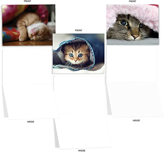 All Occasion Cards Blank for Thank You Vintage Style Gift for Cat Lovers Happy Birthday Cat Note Card Set Friendship Greetings
