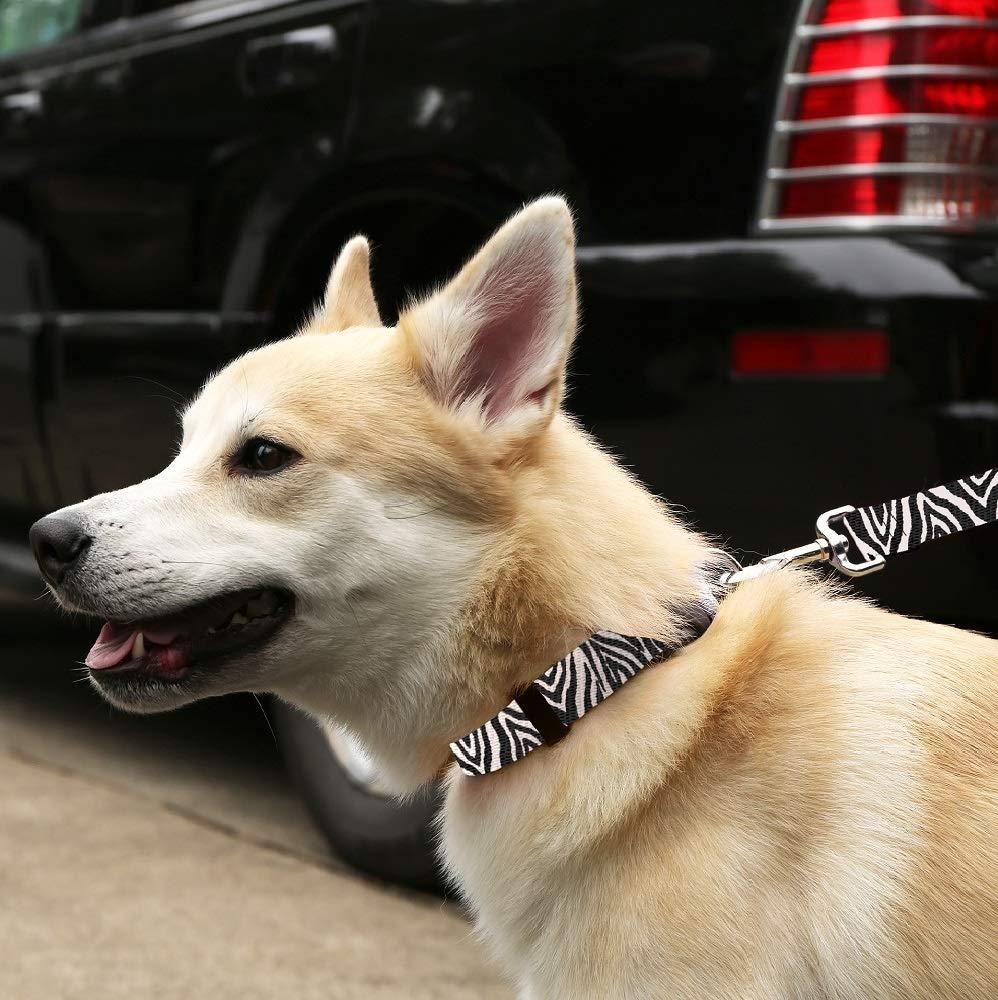Moose Pet Wear Deluxe Dog Leash - Patterned Heavy Duty Pet Leashes, Made in the USA - 3/4 Inch x 6 Feet, Leopard
