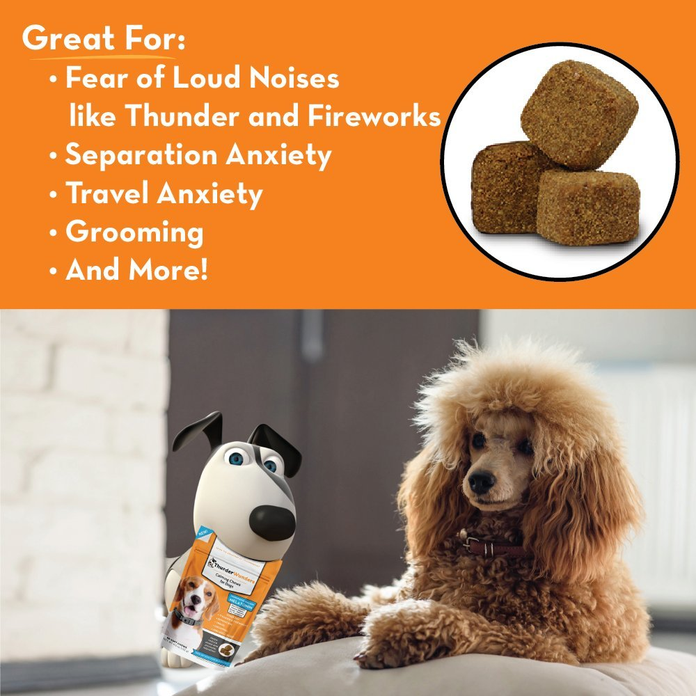 ThunderWunders Dog Calming Chews - Anxiety Supplement with Thiamine,  L-Tryptophan, Melatonin and Ginger - Relieve Stress from Separation,  Storms,