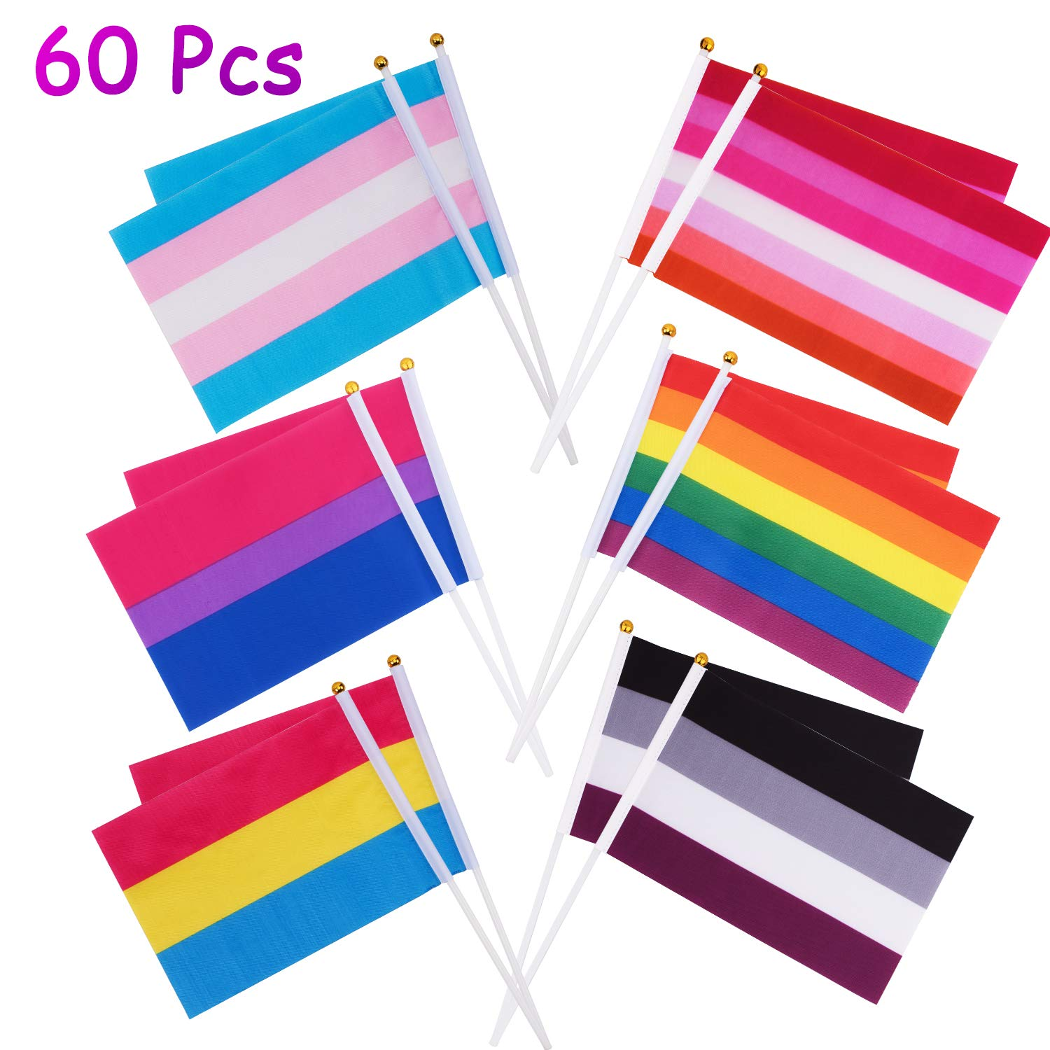 Whaline 60 Pack Rainbow Stick Flags, Gay Pride Small Mini Flags Transgender  Asexual Bisexual Pansexual Lesbian Flags LGBT Party Parade Decorations (10  ...