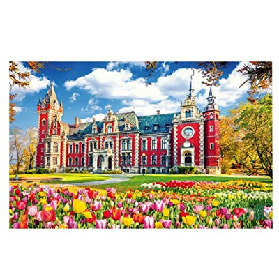 1000 Pcs Jigsaw Puzzle, Ecstasi red Castle Tulip Sky Paper Nature Landscape for Adult and Kids Family Game at Home, Autumn Color Plant Scene Gift for Boys Girls: Home & Kitchen