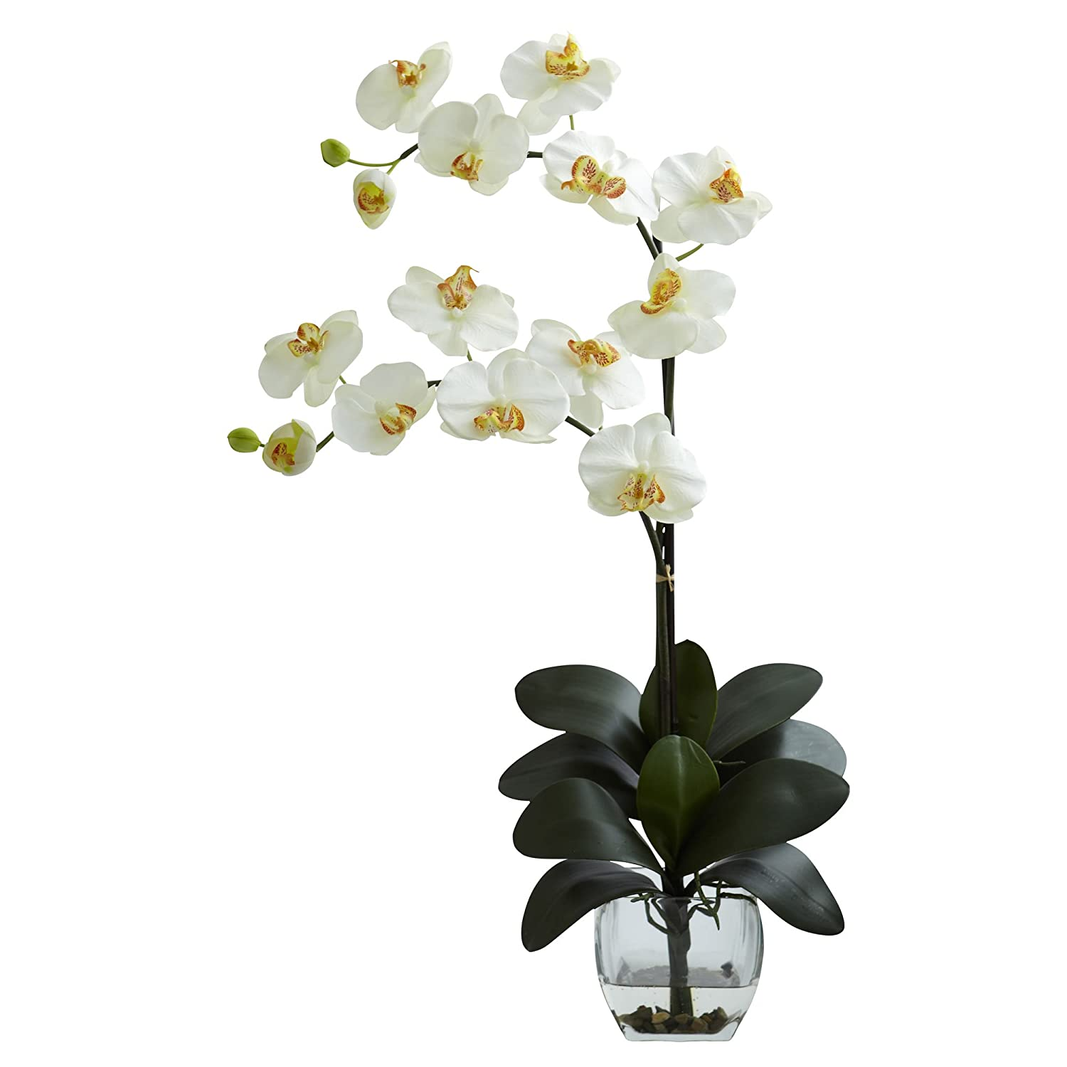 Nearly Natural 1323-CR Double Phalaenopsis Orchid with Vase Arrangement, Cream