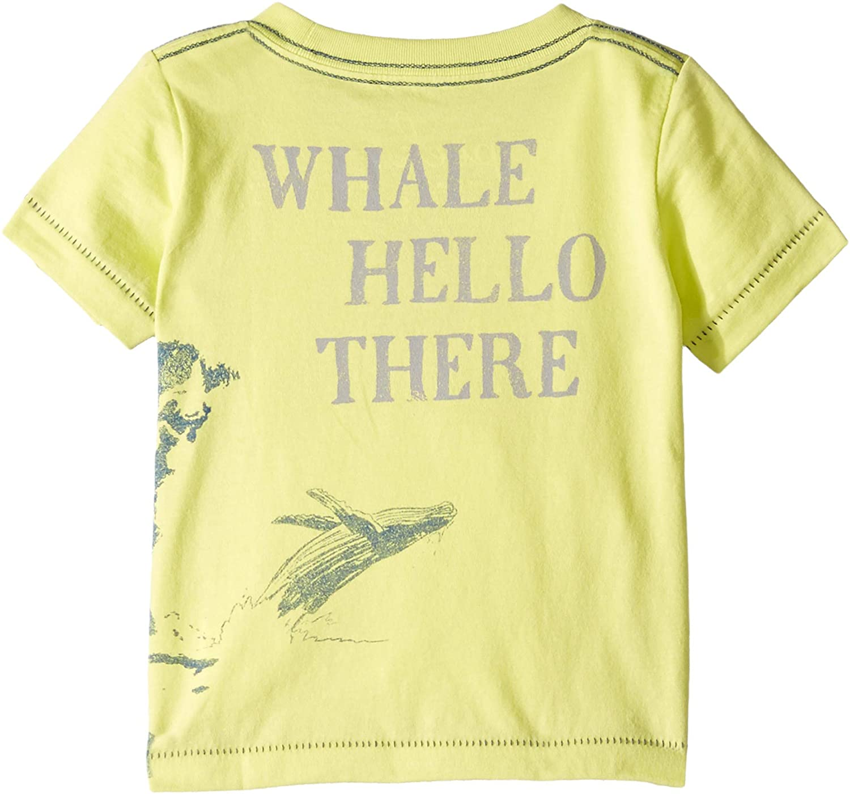 PEEK Baby Boys Whale Hello Tee 3-6 mos Lime SM Infant