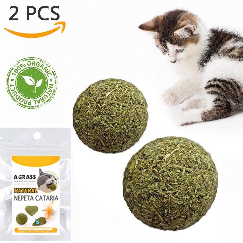TanJean Catnip Ball Catnip Jouets, 100% balle naturelle Jouet pour les chats 2 PCS Cat dentaire Chews Cat traite pour le nettoyage des dents de chat, Silvervine chat aidant avec de mauvaises dents de souffle Soins buccaux