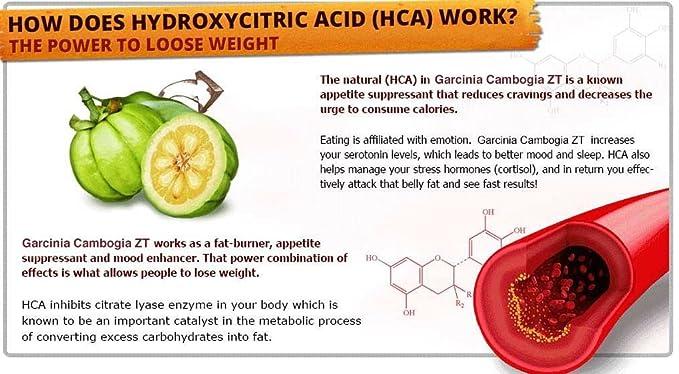 valency healthcare totalslim garcinia cambogia 50 hydroxycitric