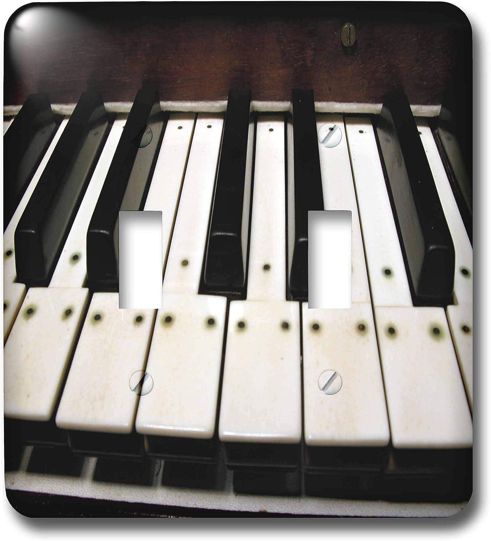 3drose Llc Lsp 20682 2 Piano Keys Double Toggle Switch Switch Plates Amazon Com
