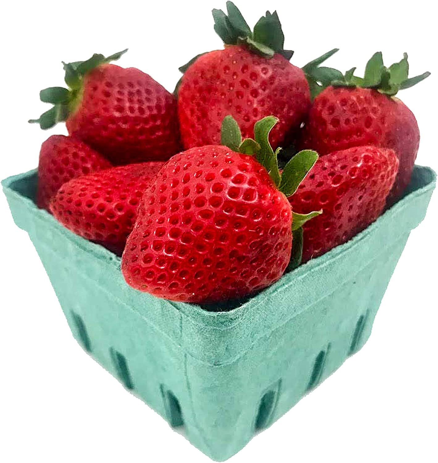 Pint Green Fiber Fruit/Berry Basket Container (25Pack) for Strawberry Blueberries Tomatoes and Produce