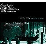 Concerto Stravagante+Katalog