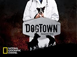 DogTown Season 1