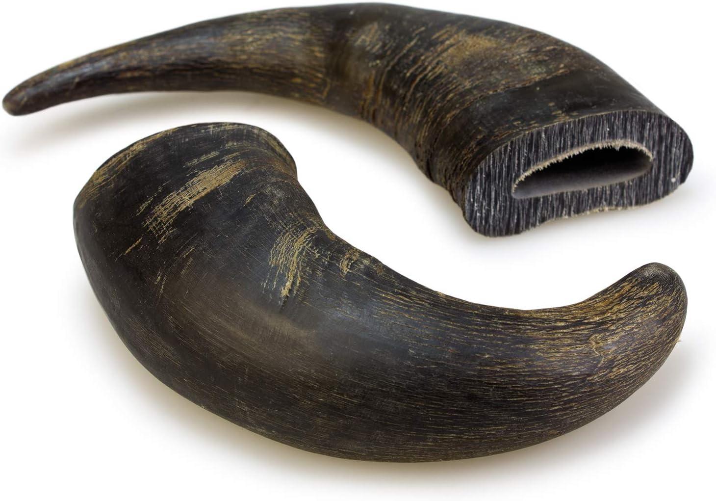 Cuerno de búfalo (Bolsa 1 unidad)