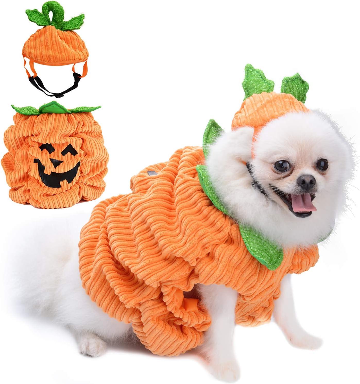 Amazon Com Legendog Dog Halloween Shirt Pet Clothes Cute Cat Dog Halloween Pumpkin Costumes Dog Apparel Halloween Costumes For Dogs Creative Halloween Pumpkin Shirts For Dogs Pet Supplies