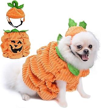 Legendog Disfraz de Halloween para Perros, Disfraz de Calabaza ...