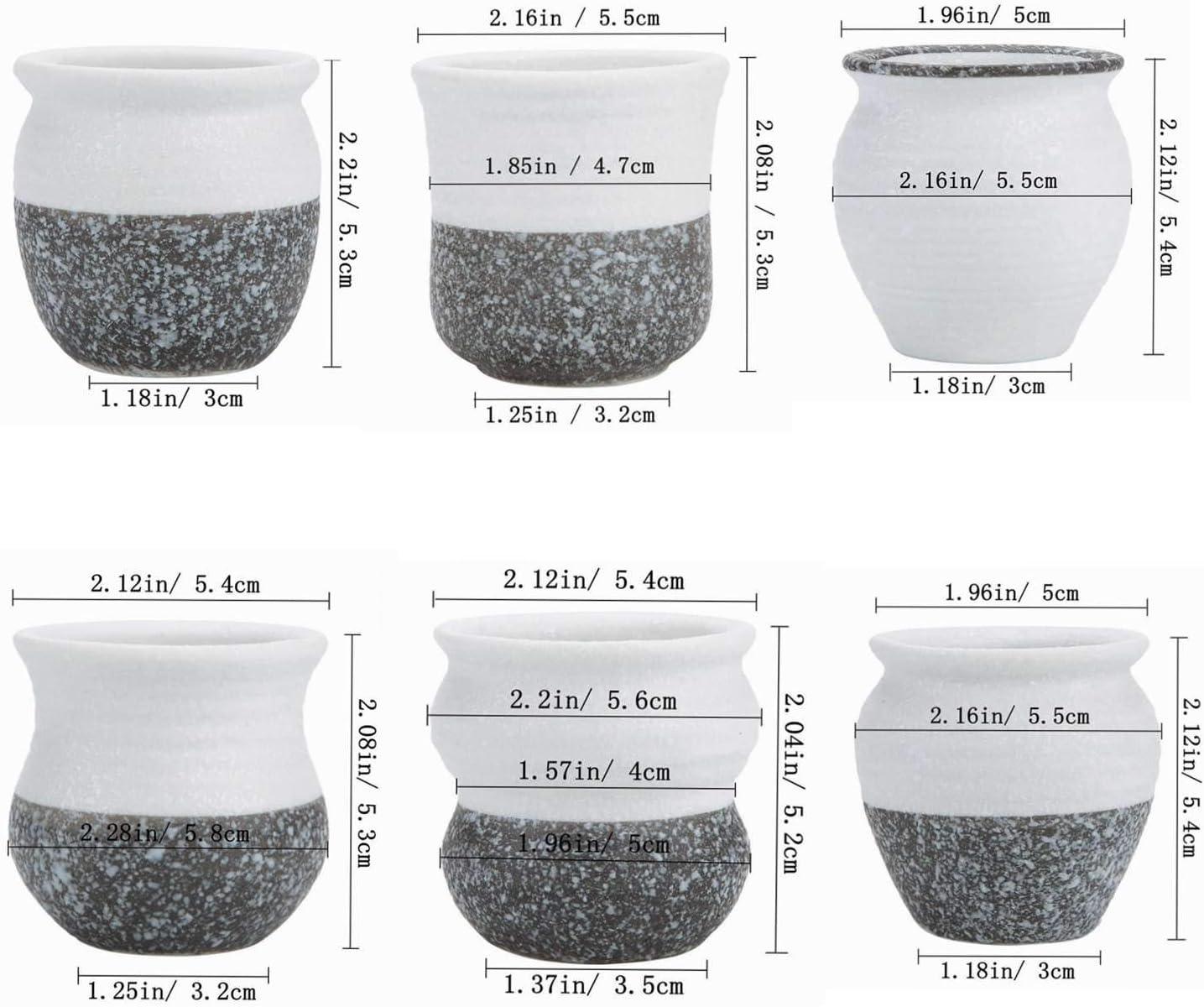 T4U Conjunto de 6 Juego de cer/ámica Mini Corea Estilo Snow Serial Juego Completo Cer/ámicos Planta Maceta Suculento Cactus Planta Maceta Planta Contenedor Vivero Macetas de jard/ín Macetas Envase