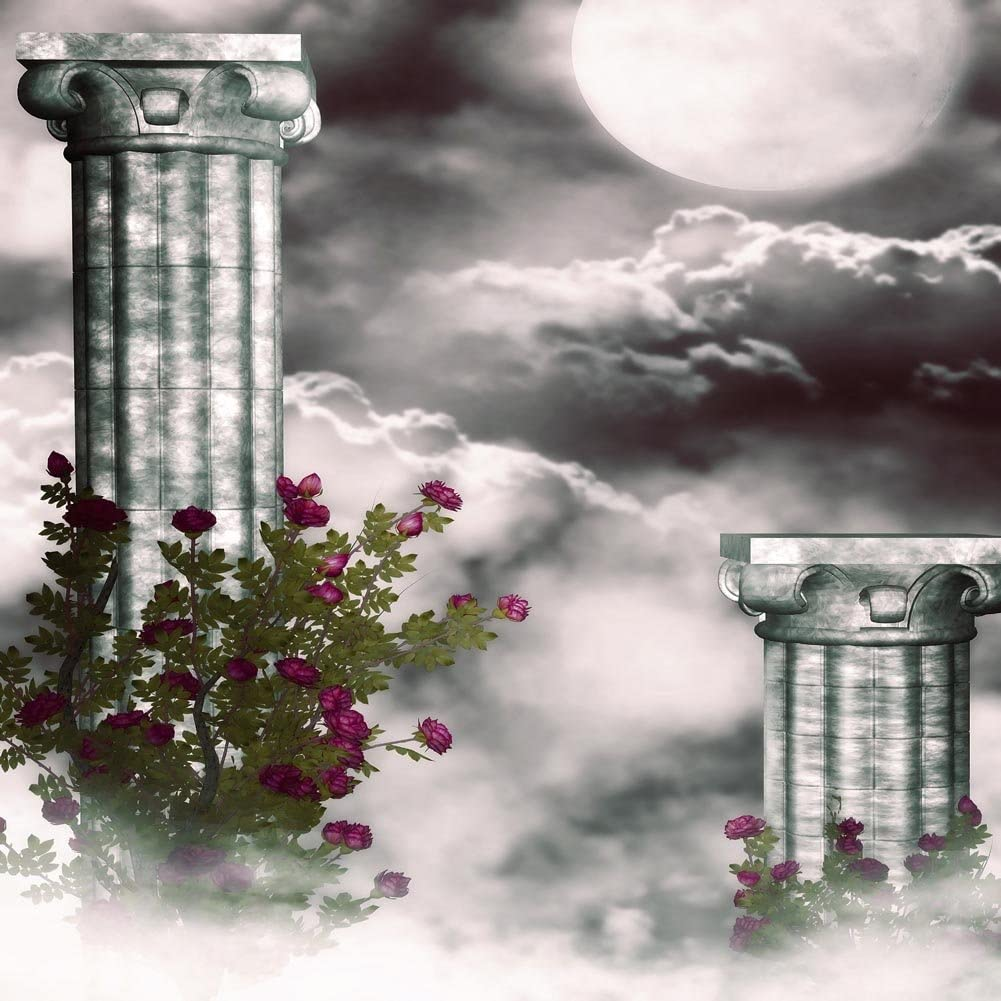 GladsBuy The Cloud of The Column 8 x 8 Computer Printed Photography Backdrop Arches or Pillars Theme Background DGX-197