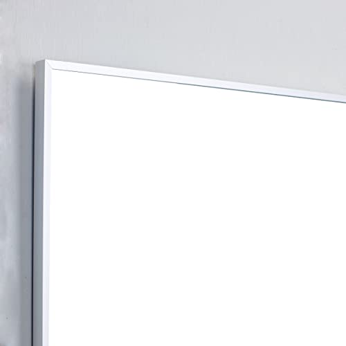 Eviva EVMR01-72X30-MetalFrame Mirrors, 72 , Brushed Silver